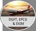 DGFT, EPCG & EPIM